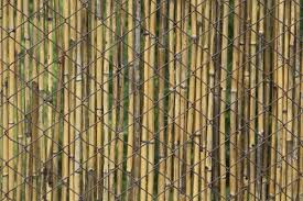 chain link fence bamboo slats. Contemporary Bamboo Rolledwoodonchainlinkfence In Chain Link Fence Bamboo Slats