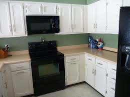 Fascinating Thermofoil Kitchen Cabinets Colors Gallery Cons Doors