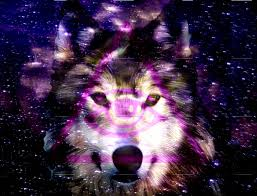 galaxy tumblr hipster wolf. Perfect Wolf Hipster Wolf Tumblr  Photo25 Inside Galaxy Tumblr Wolf A
