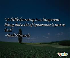 a little learning is a dangerous thing essay essays for kids short essay on little learning is a dangerous thing
