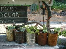 Tin Can Planters filled with hardy succulents