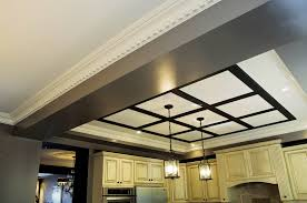 PANELED CEILING SOLUTIONS