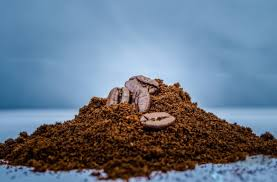 Free delivery and returns on ebay plus items for plus members. Coffee Scrub For Cellulite Does It Work Fashionbustle