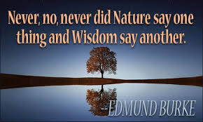 Quotes About Wisdom Beauteous Wisdom Quotes