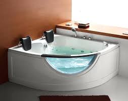 cool bathtubs steam planet two person corner whirlpool tub jacuzzi for mobile homes