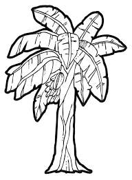 Small Picture Banana Tree Coloring Page Coloring Home