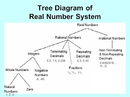 Real Number System Venn Diagram Besides Real Number System Venn Diagram On Venn Diagram Number
