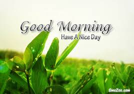 Good Morning Sms Quotes