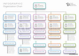 Organization Chart Vector Photo Art Print Organization Chart Vector Graphics