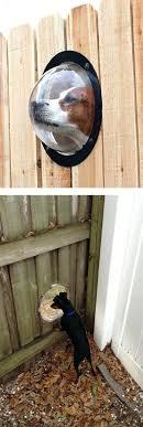 diy cat door for window cat door elegant fence window for pets of luxury cat door