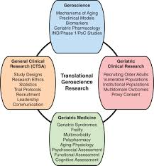 Study Design In Medical Research Ppt Creating The Next Generation Of Translational Geroscientists