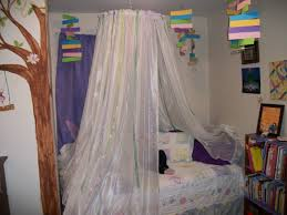 bed canopy from hula hoop