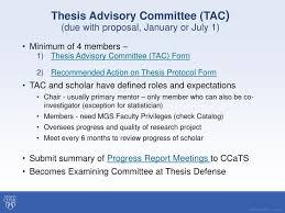 Thesis advisory