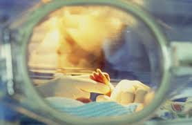 Baby Survival Rate Chart A Weekly Look At Premature Babies And Complications