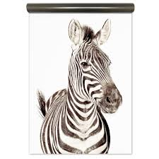 Magnetic Wallpaper Zebra By Groovy Magnets