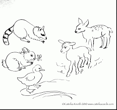 Forest Animal Coloring Page Excellent Spring Baby Animals Coloring Pages With Animal Printabl On