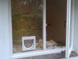 cat flap fitting service in basingstoke