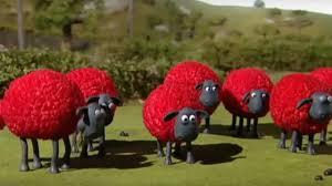 Shaun the Sheep Những Chú Cừu Thông Minh Tập 10 20 Phút - Câu Mèo Trong Ống  Khói - YouTube
