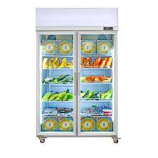 china commercial upright frozen food
