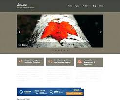 Basic Website Templates Beauteous Clean Simple Website Template Business Website Template Home Page