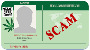 Cannabis Hemp Medical Scammers - Residents Maryland Preying Gazette On