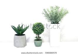 Indoor home office plants royalty Silhouette Icons Full Size Of Home House Decoration Plants Pots On Stock Photo Royalty Free Scenic And White Kudak Decoration Plants Ideas Extraordinary Indoor Gardening Design And