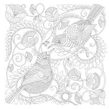 Coloring Books Beautiful Birds And Treetop