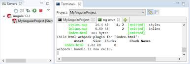 Running the Angular Server
