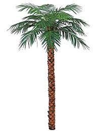 ??? 8' <b>Artificial Phoenix</b> Coconut <b>Palm Tree</b> with No Pot Silk ...