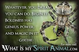 Spider Quotes Sayings Animal Quotes Sayings