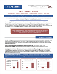 Ceo Resume Examples Adorable Executive Resume Examples