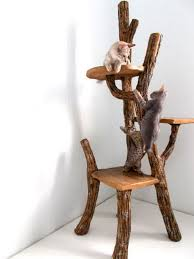 Furniture: Driftwood Mirror Ideas - Driftwood Ideas