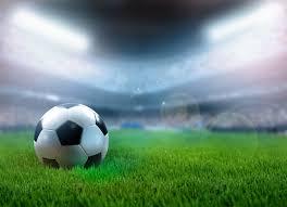 soccer field grass. Soccer Field Grass L