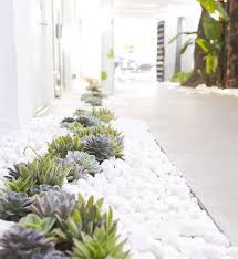 modern and chic front yard design ideas