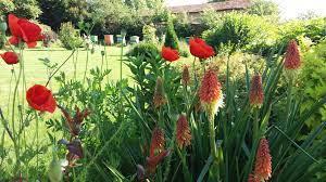 Да аз се грижа за цветната градина, а мъжът ми за овощната. Szdavane Na Prekrasna Cvetna Gradina S Yasen Kupolni Kshi Sferata 123