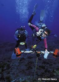 frequently asked questions marine biologist job description and salary