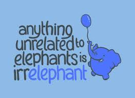 Elephant Quotes Magnificent Top 48 Most Funniest Elephant Quotes Funny Elephant Quotes