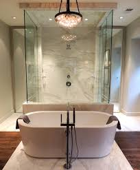 Modern Walk Through Shower Design Inspiration
