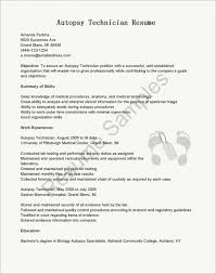 Information Technology Resume Objective Puter Tech Examples
