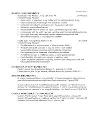 professional nursing resume ii