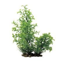 <b>Искусственное растение</b> ArtUniq Ludwigia green 30 - Людвигия ...