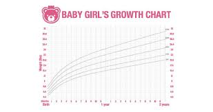 Growth Chart Newborn Girl Dry Erase Baby Girl Growth Chart Decal