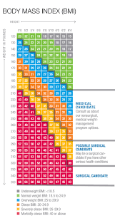 47 Most Popular Obesity Scale Chart For Women