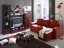 cute red and black furniture for living