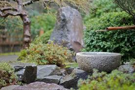 Garden Project: A Rock Garden Plants