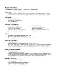 Example Of Resume For Internship
