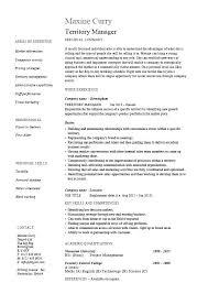 Example Job Description Template