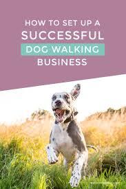 Best 25 Pet Sitting Ideas On Pinterest Pet Sitting Business