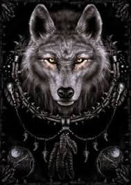 native american wolf wallpaper. Simple American Amazoncom Posters Gothic Poster  Spiral Wolf Dreamcatcher 36 X  DreamcatcherDreamcatcher WallpaperWereWolvesNative American  With Native American Wallpaper E