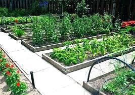 raised bed vegetable garden covers raised bed vegetable garden covers small raised vegetable garden full image